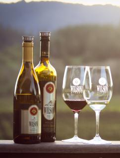 Healdsburg Wine Tasting